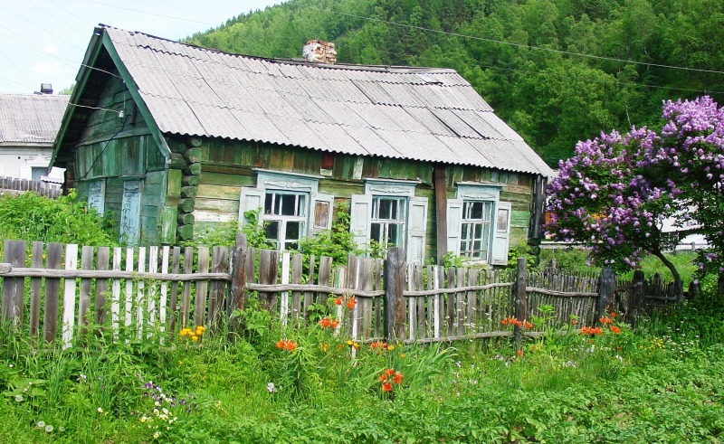 Image result for dacha